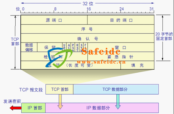 TCP/IP 报文头部结构